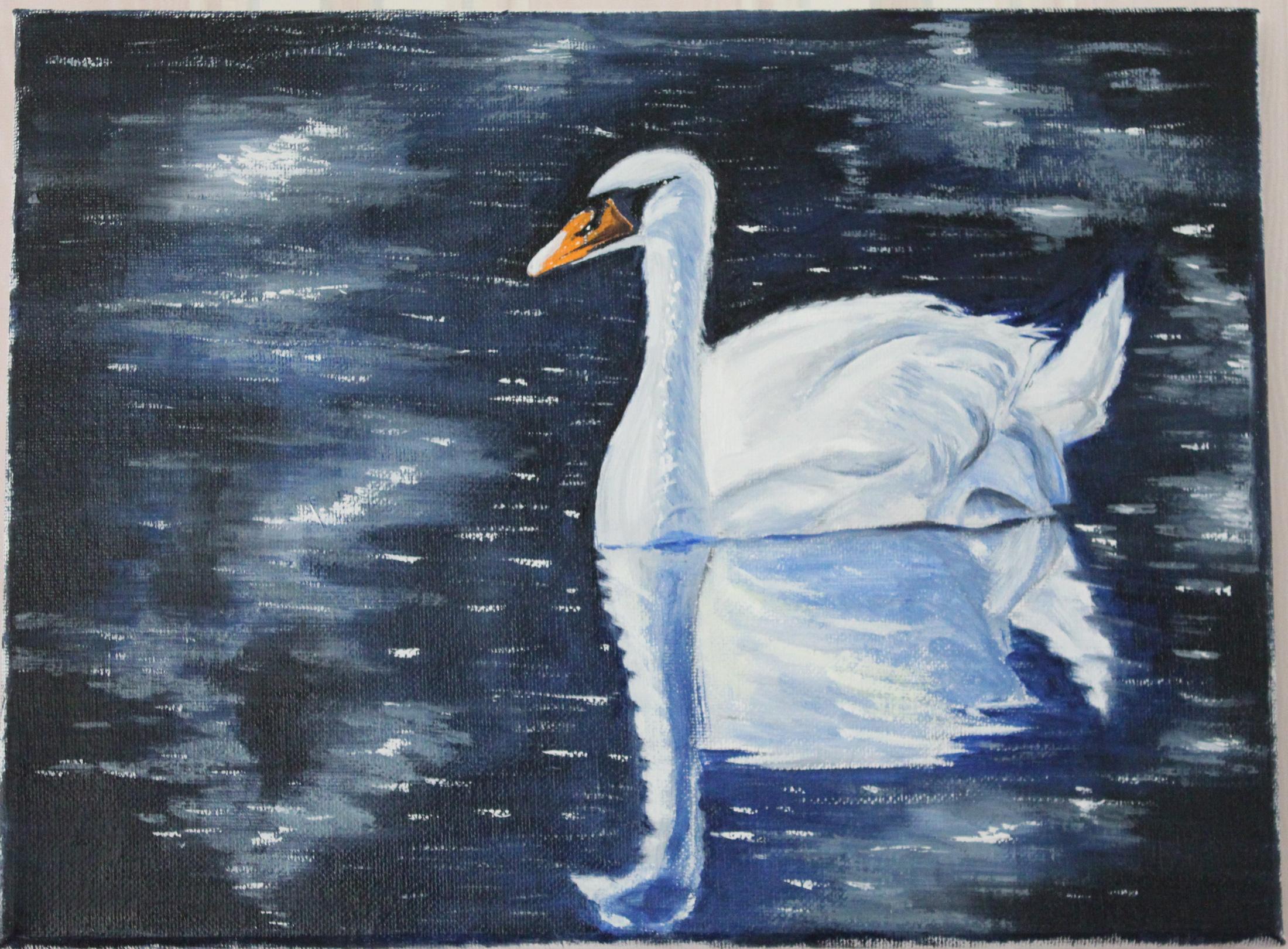 天鹅湖 油画